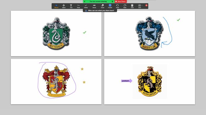 annotation example in Zoom. Showing the four houses of Hogwarts and people choosing their house.