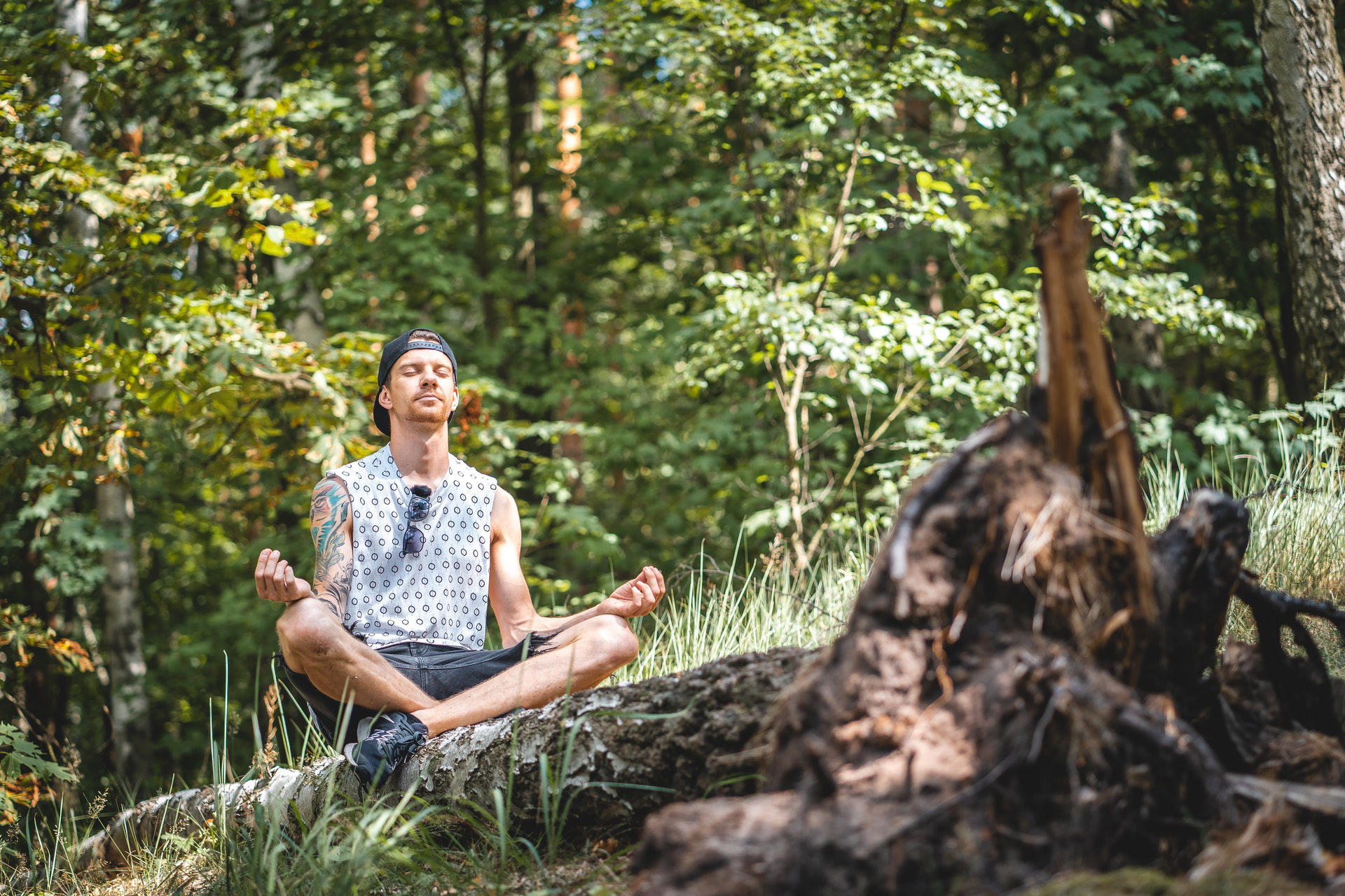 Why You Should Start a Meditation Habit and How