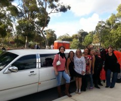 Limo Hire Perth, Hunters and Collectors concert