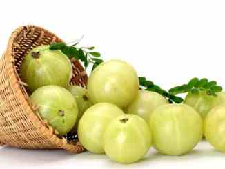 Top 10 Amazing Benefits Of Amla - The Indian Gooseberry 1