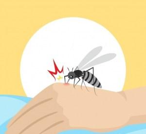 Top 5 Dengue After Tips