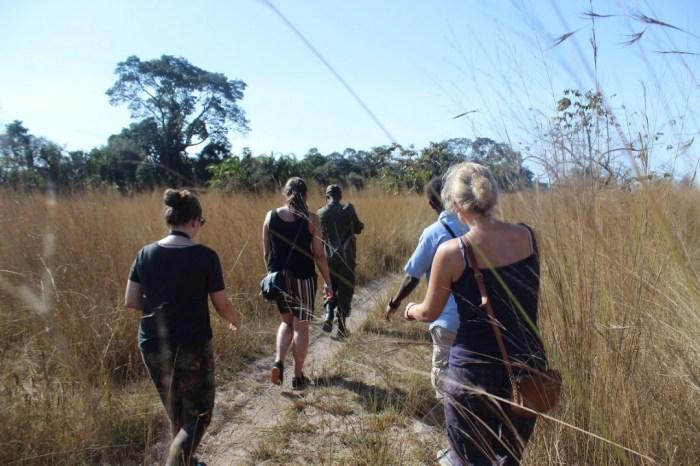 Rubondo Tanzania Walking Safari