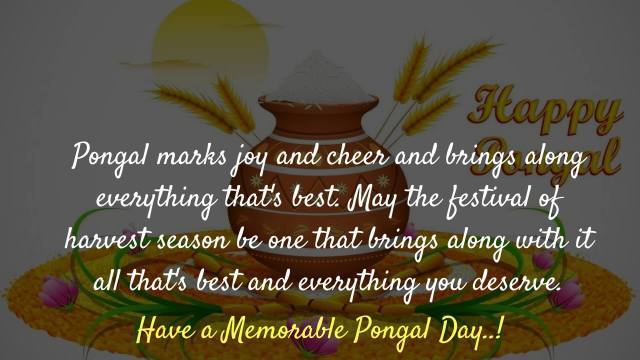 Pongal Wishes Pictures