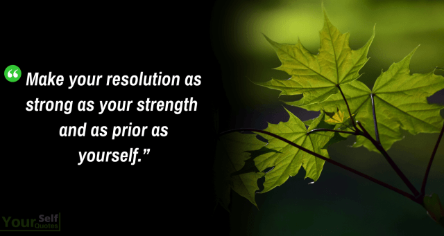Happy New Year Resolution Quotes - Best New Year's Resolution Quotes Ideas to inspire You for 2020