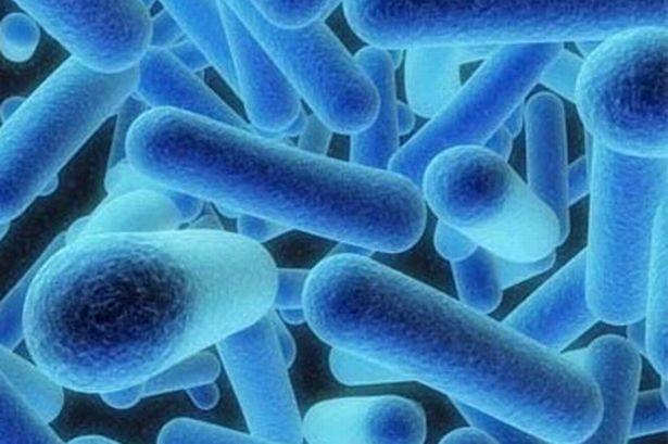 Legionnaires Disease: Officials Investigating Cause in Florida Hotel