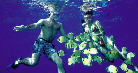 Snorkling at Isla Tabarca