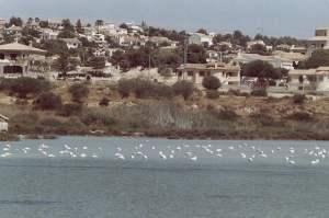 Calpe Salt lake