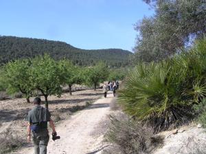 Vega Baja Walk