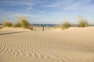 Guardamar del Segura dunes