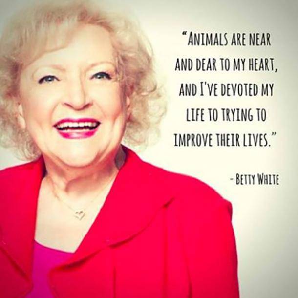 BettyWhite3 - 26 All Time Best Betty White Quotes & Funny Memes In Honor Of Her (96th!) Birthday