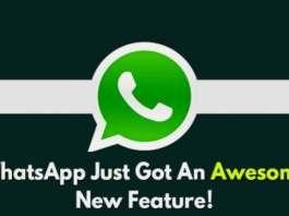 whatsapp-pip-feature