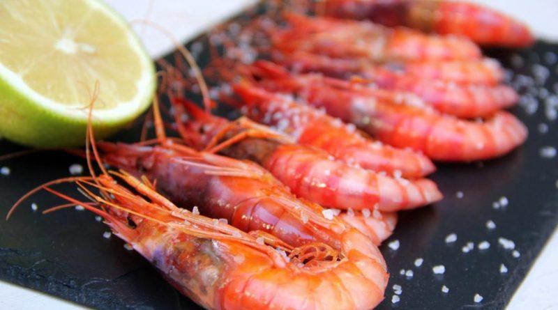 Grilled red prawn Palamos