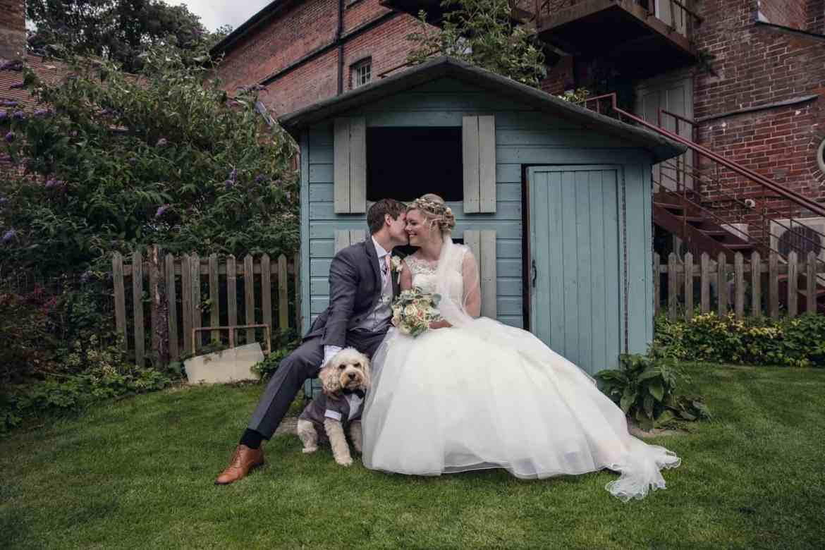 real wedding dog
