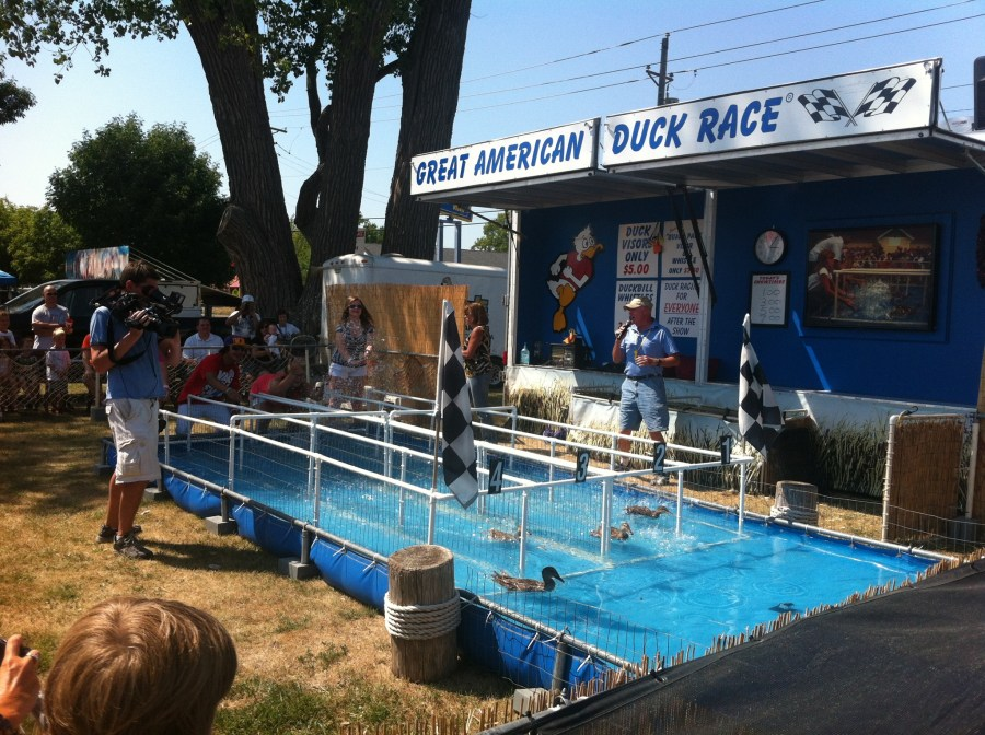 The Great American Duck Race