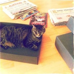 Cosette is making sure the box doesn't feel too empty