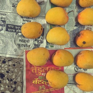 Mango season is the best season.