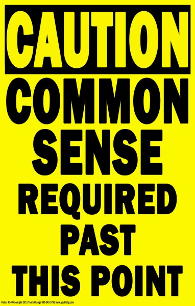 school common sense poster
