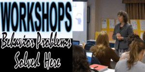 teacher professional development workshop