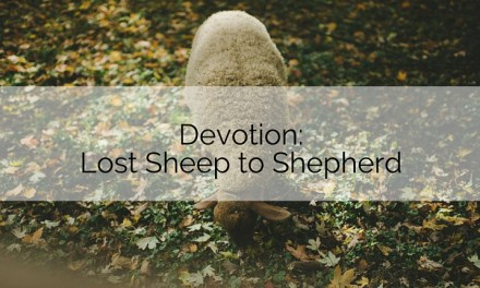 Devotion: Lost Sheep to Shepherd
