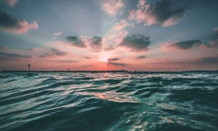 Why? Talk Sheet: But God Said No More Floods