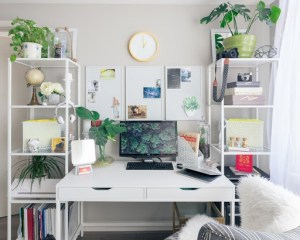 white desk with white chair and two plant stands on either side
