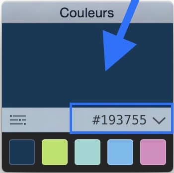 Capturez la couleur que vous voulez pour votre site internet 2