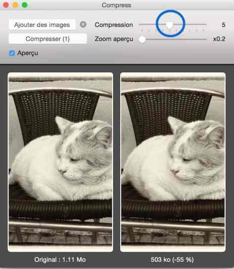 Compress, une super application pour compresser vos images par lot-2