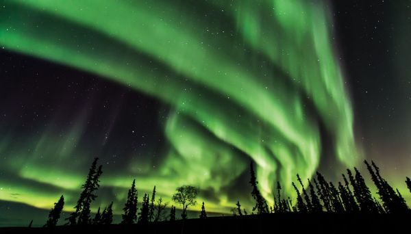 Northern Lights Fairbanks September