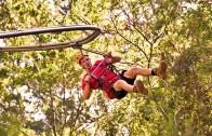 Yeni Bir Heyecan: Roller Coaster Zipline!