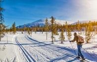 Norveç Kar Parkında Doyumsuz Kayak Keyfi