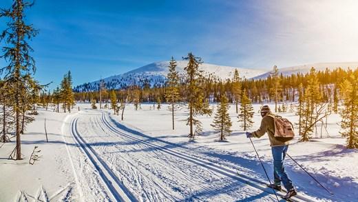 norveç kar parkında kayak keyfi