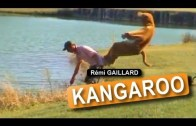 İnsan Kanguru Olursa
