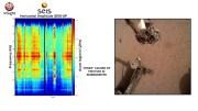 Mars Keşif Aracı Tarafından Kaydedilen Tüyler Ürpertici Deprem Sesleri