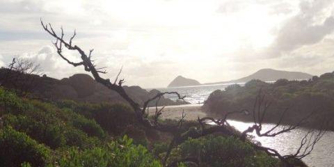 australie-victoria-promontory-national-park-voyage-randonnée-travel