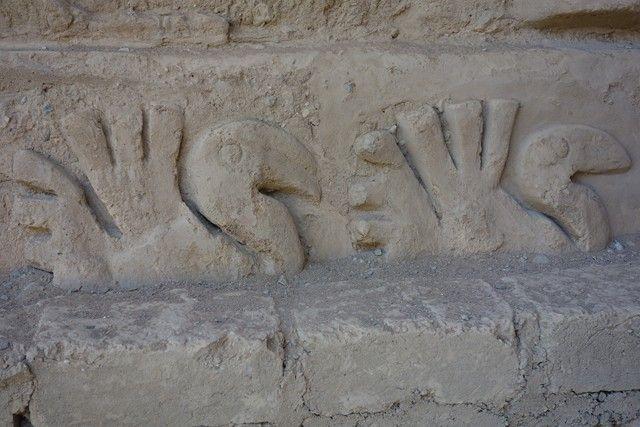 Perou- Chan Chan: Poissons et oiseaux étaient predominants dans les bas reliefs du palais.