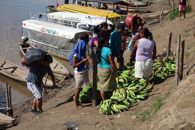 Voyage au Perou- Lagunas: Les vendeurs de bananes viennent d'arrivé. C'est la cohue.
