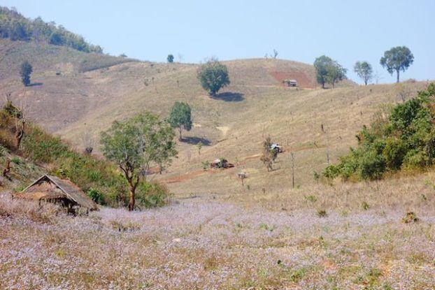 les couleurs des paysages en birmanie sont d'une beauté sans nom dans la randonnée photo voyage tour du monde http://yoytourdumonde.fr