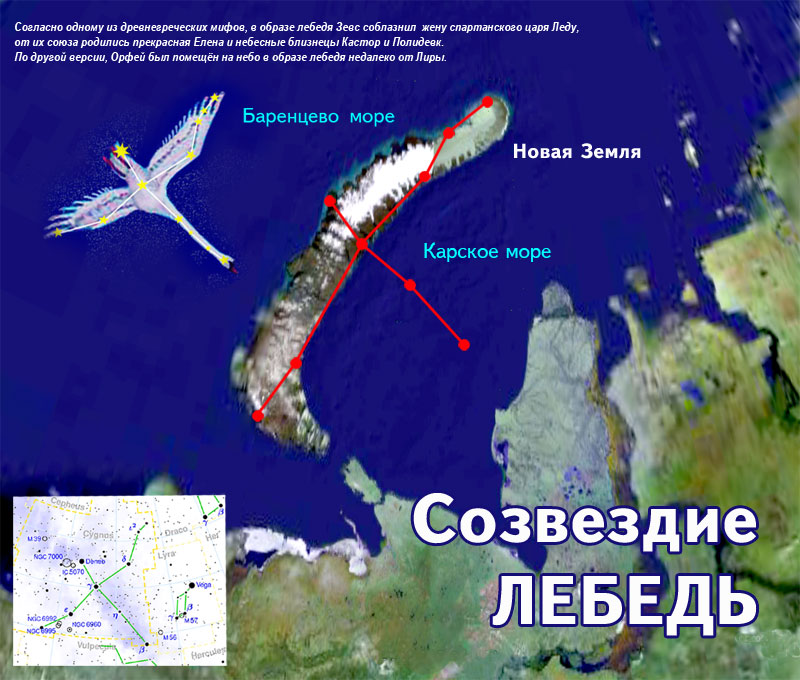 Image result for вега лебедь