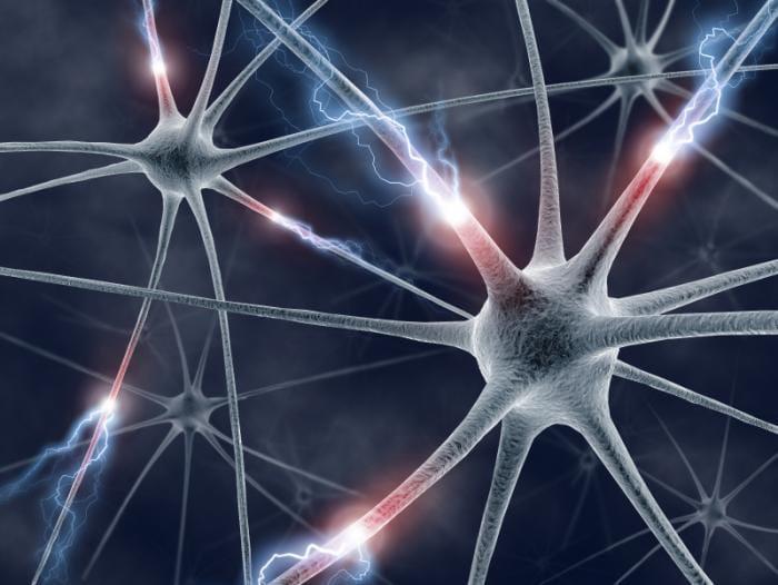 Εγκρίθηκε πρωτοποριακή μελέτη χρήσης βλαστικών κυττάρων για τη θεραπεία σκλήρυνσης κατά πλάκας