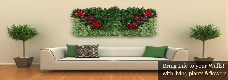 Interior Plant Design   Los Angeles Indoor Plants   Plantscape Designs