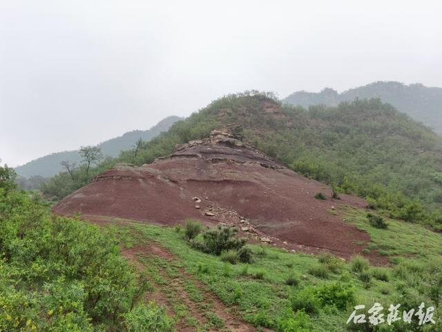 The western part of Shijiazhuang was once an underwater world 2 billion years ago! The discovery of paleontological relics and stromatolite reef groups 2 billion years ago in Jingxing