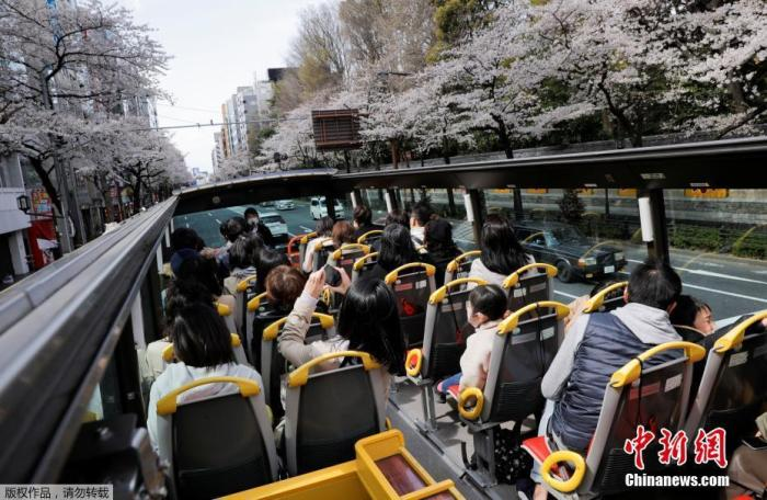 There is a clear rebound in the epidemic in many places in Japan, but the crowds of cherry blossom viewing are not decreasing
