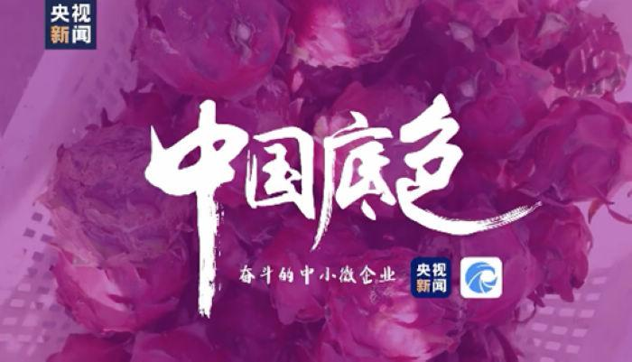 """Tianyancha assists the documentary """"Chinese Background"""" to provide professional information and data"""