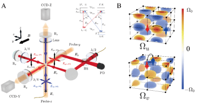 Important progress in quantum simulation: The University of Science and Technology of China realizes the ideal Weyl semi-metal state of ultra-cold atomic system for the first time