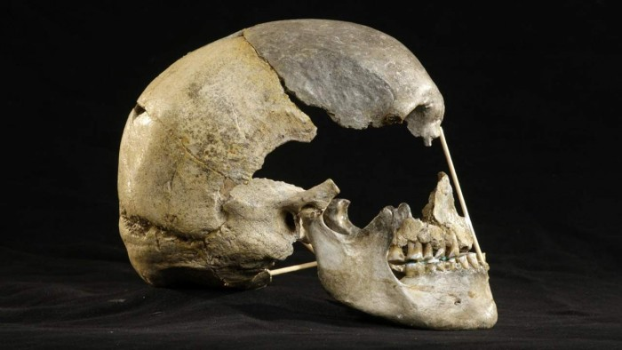 Scientists use DNA from 45,000-year-old skulls to reconstruct the oldest modern human genome