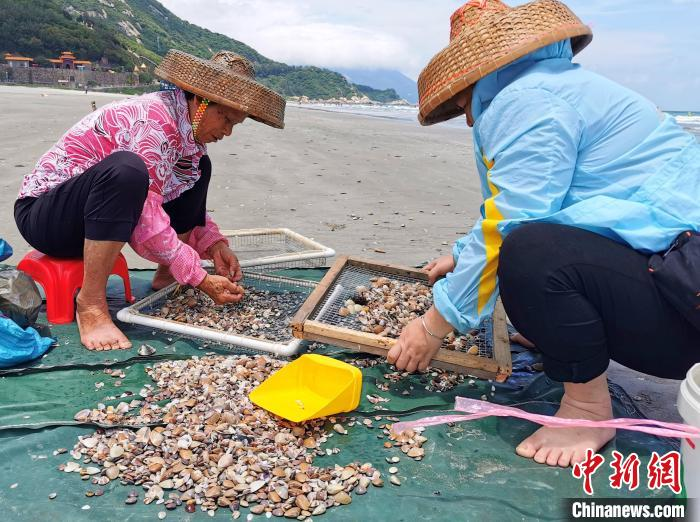 "During the summer fishing season in the South China Sea, ""Shangchuan Shabai"" in Taishan, the hometown of overseas Chinese in Guangdong, brought ""Fresh"" on the table"