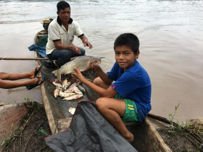 Research says the decline in biodiversity of Amazon wild fish may put people at risk of nutritional shortages