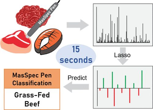 [Video] Scientists develop MasSpec pen that can identify common meat and fish in 15 seconds