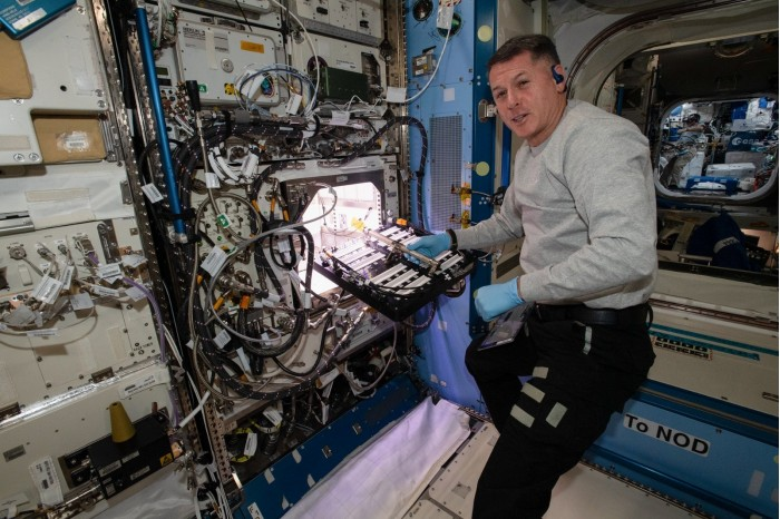 NASA grows peppers on the International Space Station