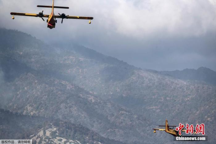 43 forest fires a day! Greek fire department launches arson investigation